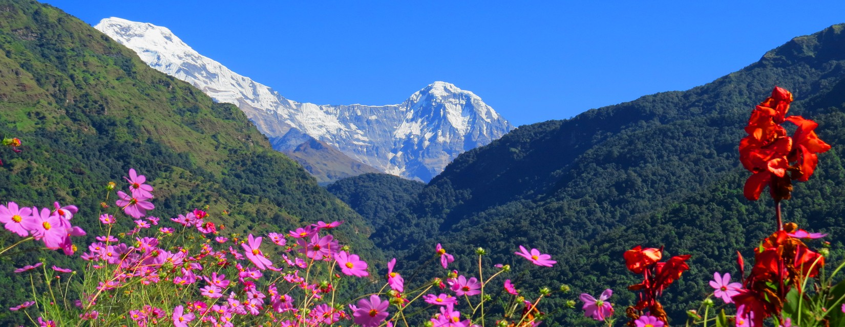 Come and Experience the Beauty of Nepal