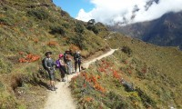 way to everest view point