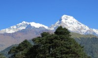 Mt. Annapurna South
