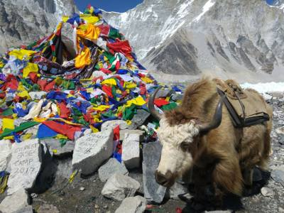 Everest Base Camp and Island Peak Summit Trek