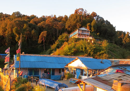 Hike up to Poon Hill (3,210 m); and trek to Tadapani (2,610 m) – 6/7 hrs.
